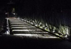 4 Idee per illuminare il giardino con i Faretti da Esterno LED