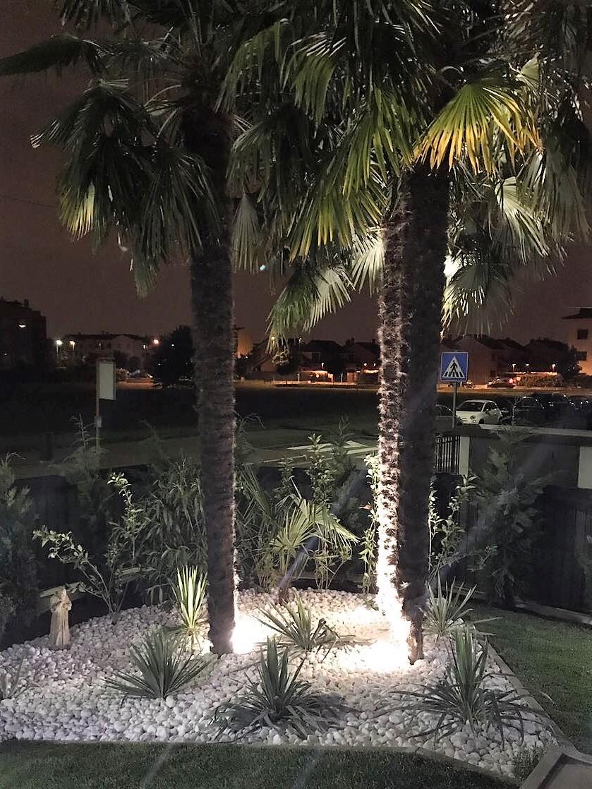 Faretti LED illuminazione piante alberi